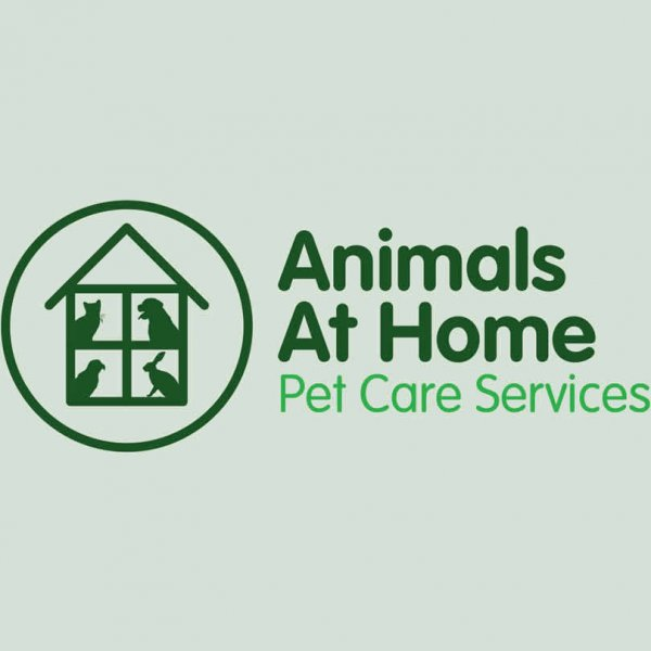 Animals at Home Franchise