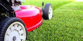 lawn-care-franchises1