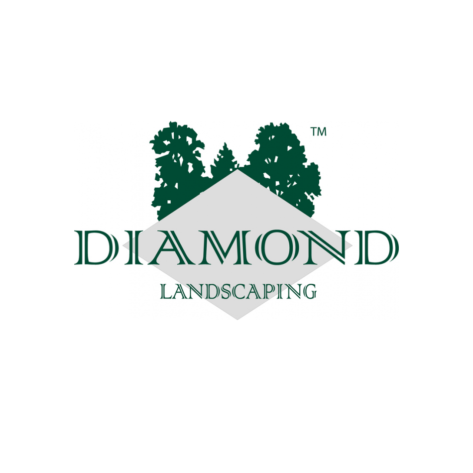diamond landscaping franchise