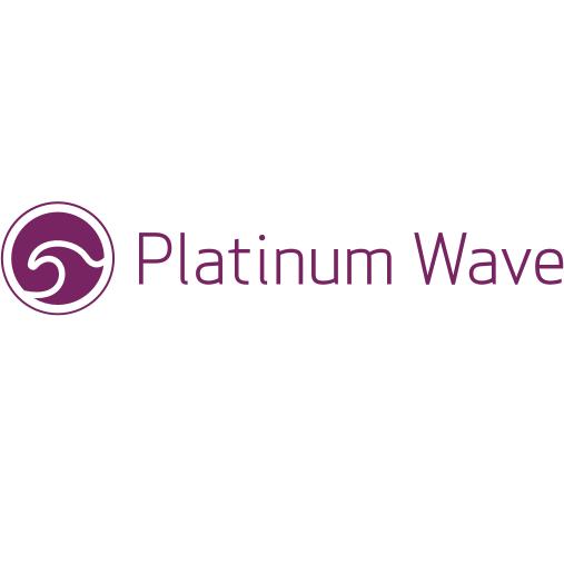 Platinum Wave Ltd Franchise
