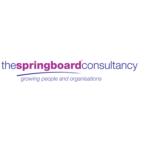The Springboard Consultancy Franchise