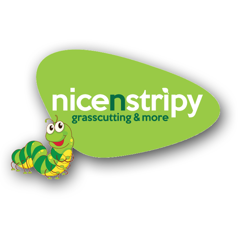 nicenstripy