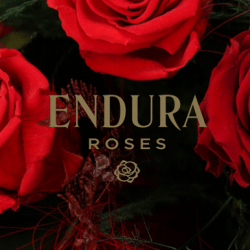 Endura Roses Franchise
