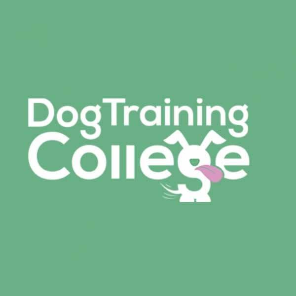 Dog Training College Franchise