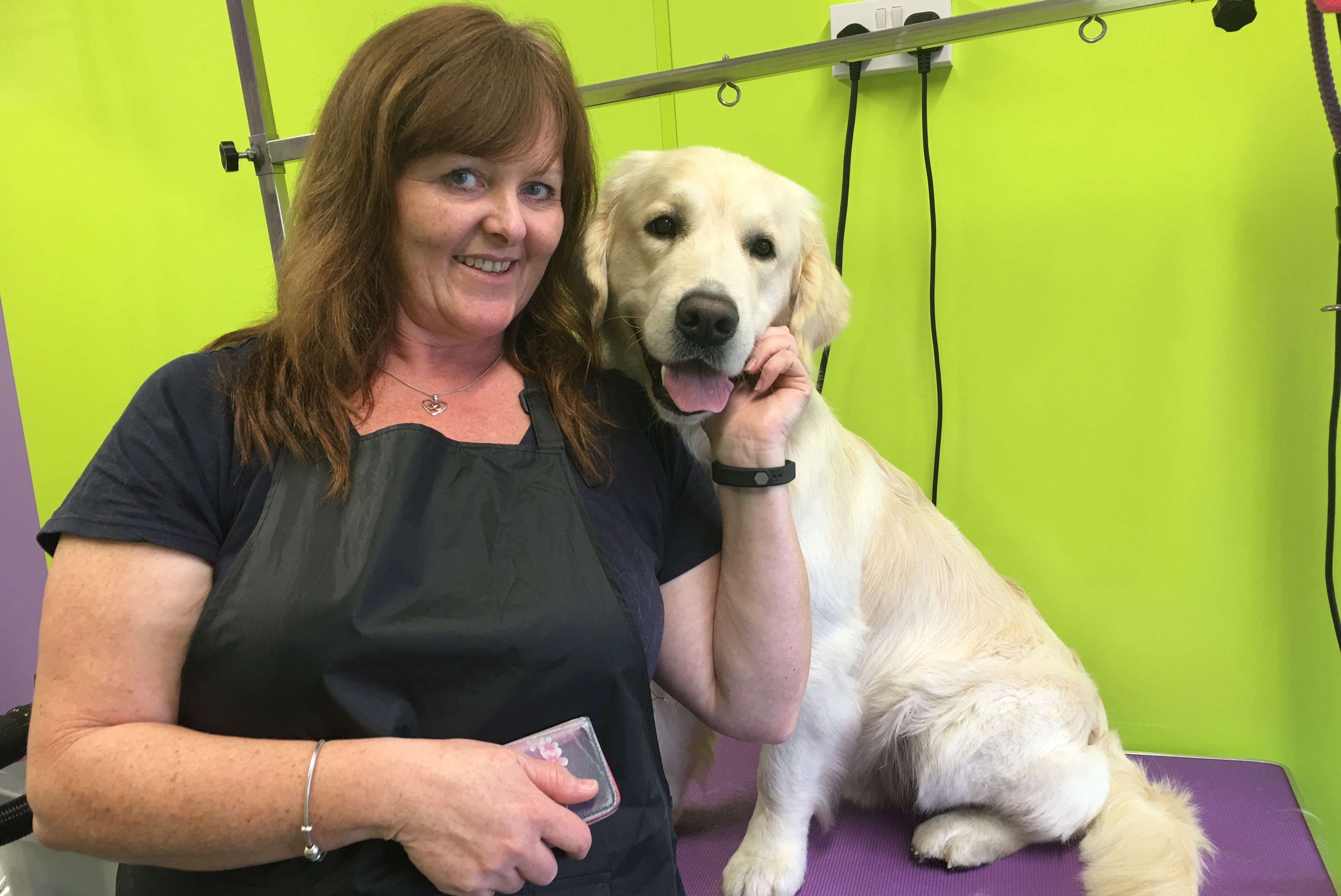 Dog Grooming Franchise