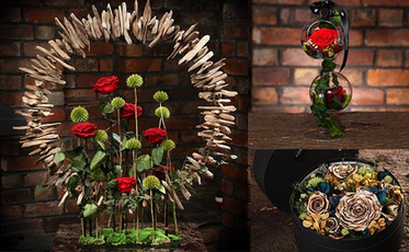 Endura Roses Collage