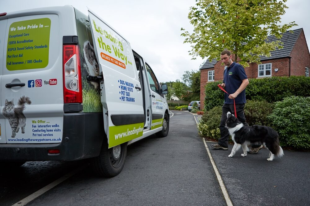 Leading The Way safe pet transport