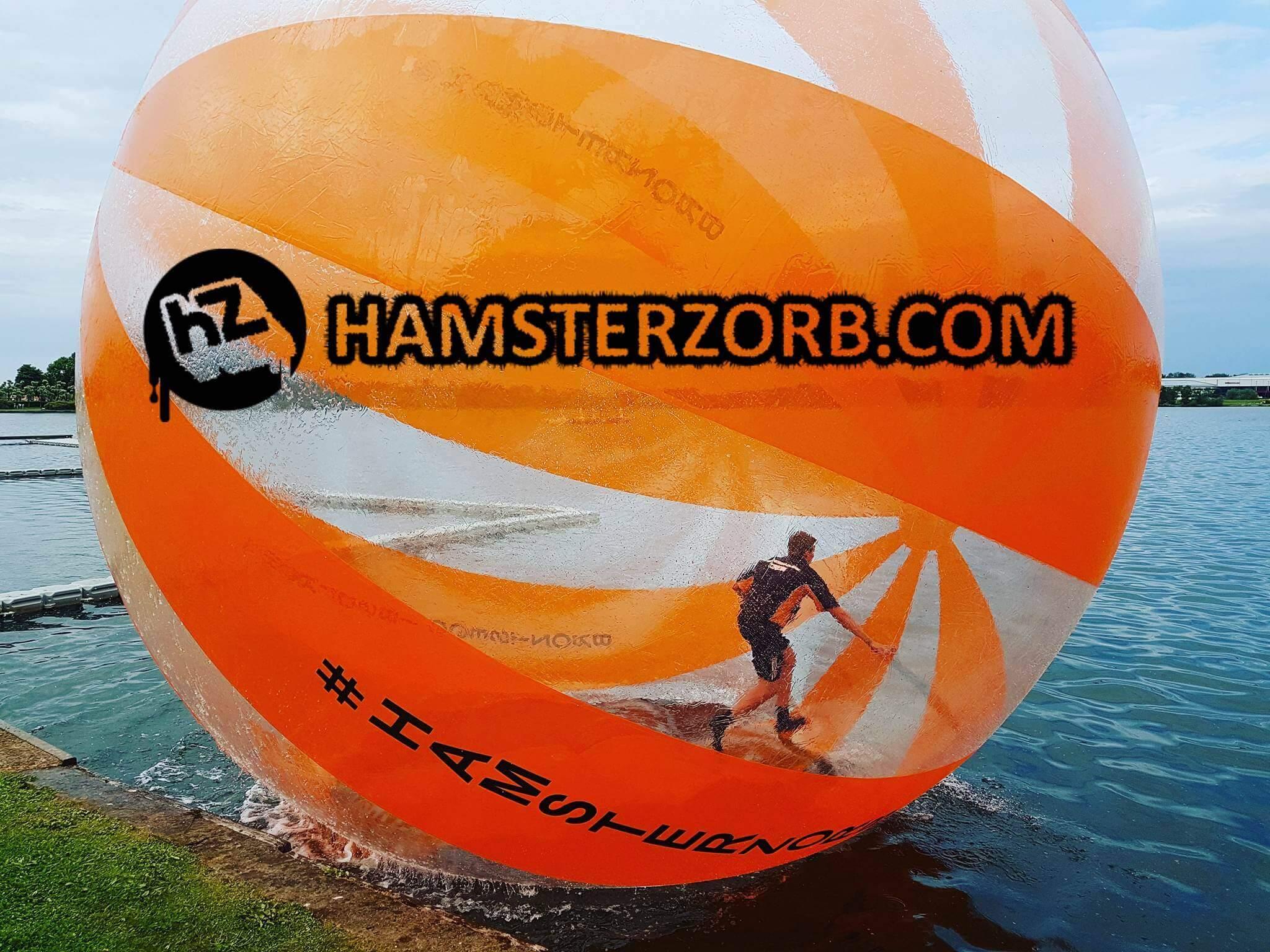 Hamsterzorb ball