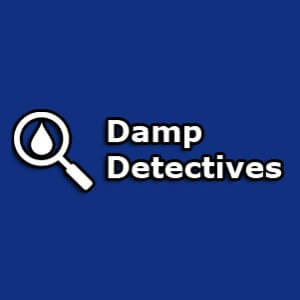 Damp Detectives Franchise